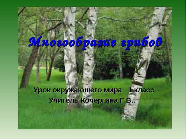 Многообразие грибов Урок окружающего мира 1 класс Учитель Кочергина Г.В..