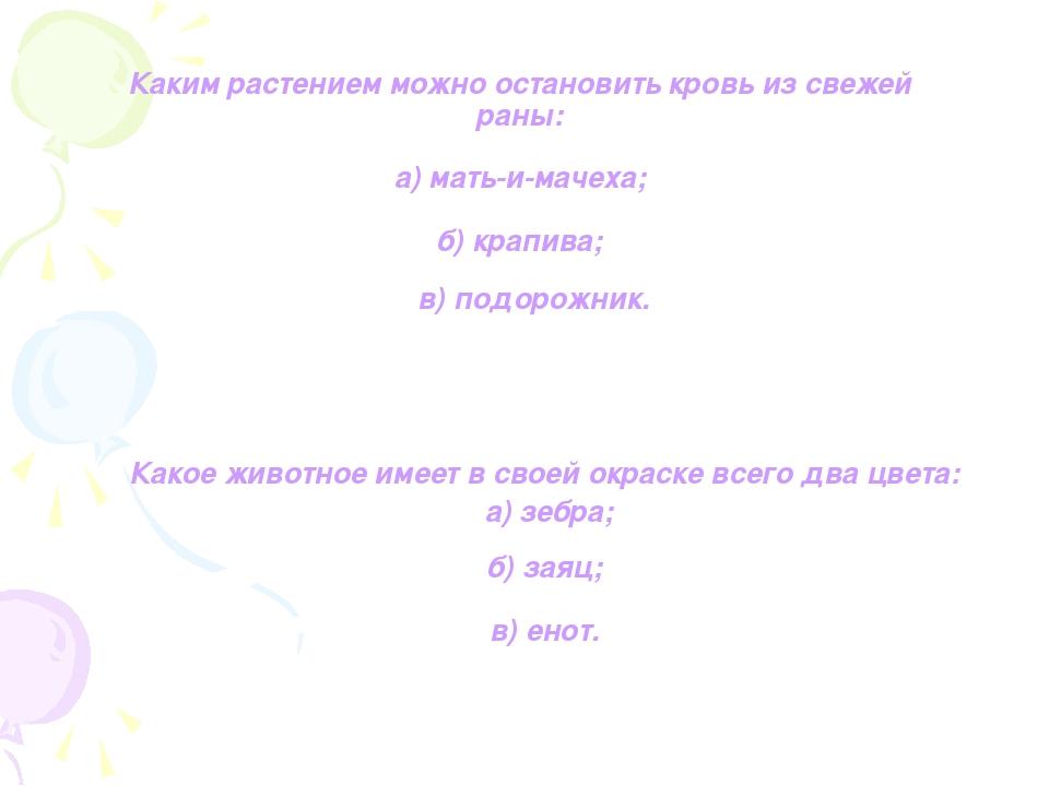 Каким растением можно остановить кровь из свежей раны: а) мать-и-мачеха; б) к...