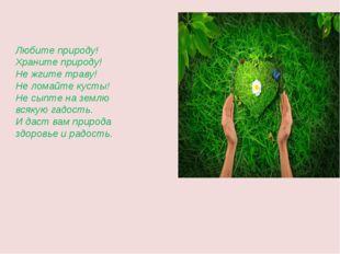 Любите природу! Храните природу! Не жгите траву! Не ломайте кусты! Не сыпте