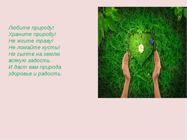 Любите природу! Храните природу! Не жгите траву! Не ломайте кусты! Не сыпте...