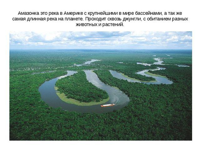 Амазонка это река в Америке с крупнейшими в мире бассейнами, а так же самая д...