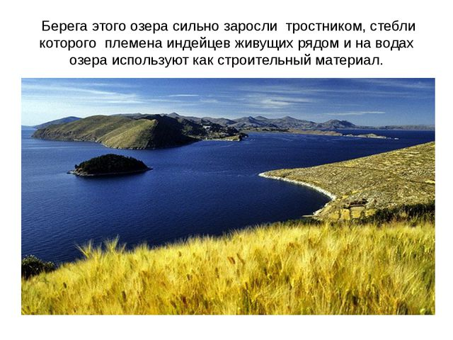 Берега этого озера сильно заросли тростником, стебли которого племена индейц...