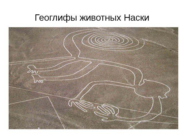 Геоглифы животных Наски