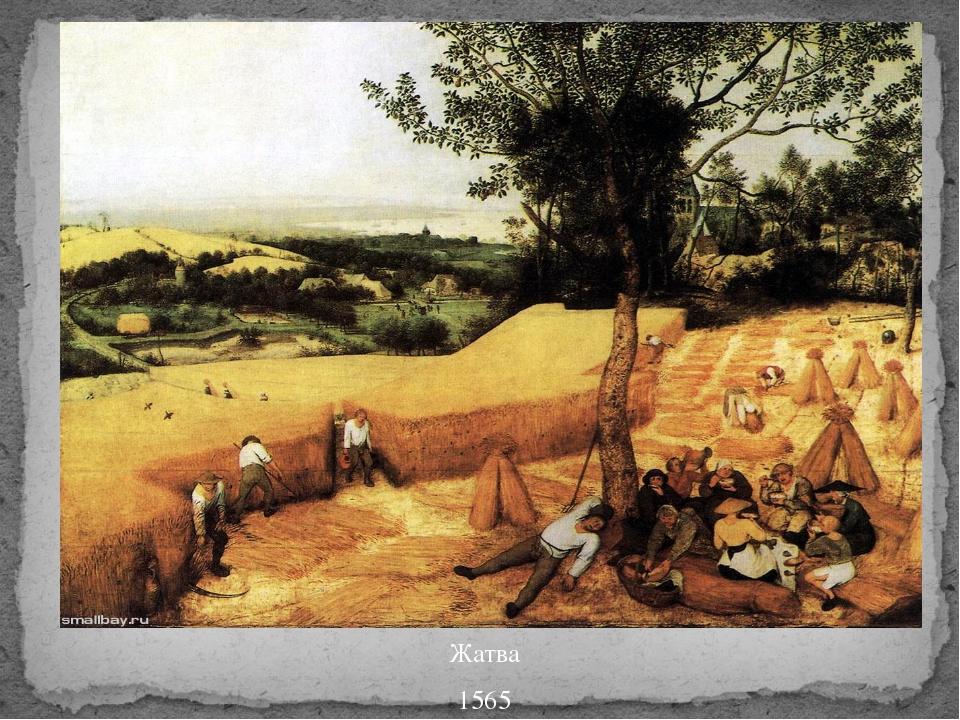 Жатва 1565