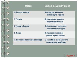 Задание 3 Орган Выполняемая функция 1. Носовая полость А)содержит жидкость сн