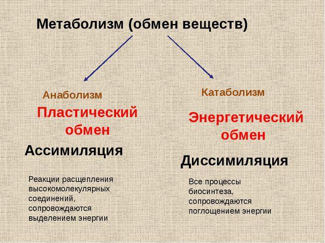 https://ds02.infourok.ru/uploads/ex/06e7/00066f86-3e7a50d5/640/img1.jpg