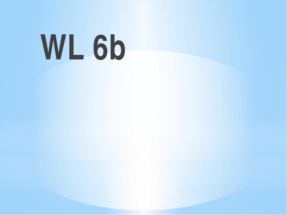 WL 6b