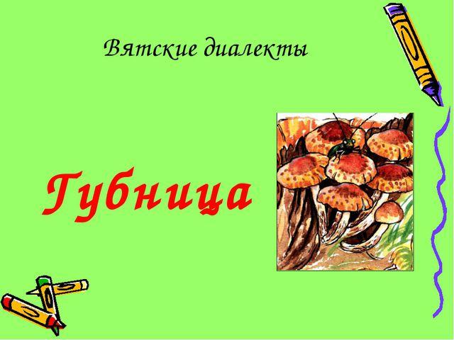 Вятские диалекты Губница