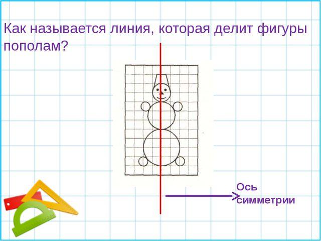 Как называется линия, которая делит фигуры пополам? Ось симметрии