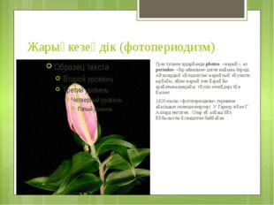 Жарықкезеңдік (фотопериодизм) Грек тілінен аударғанда photos- «жарық», ал per