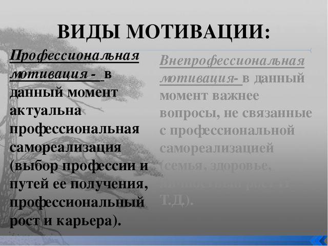 ВИДЫ МОТИВАЦИИ: Профессиональная мотивация - в данный момент актуальна профес...