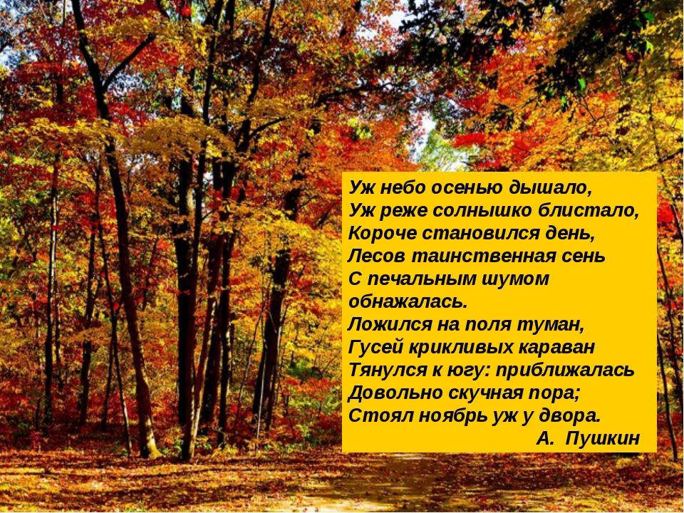А.С.Пушкин Оренбурге Уж небо осенью дышало, Уж реже солнышко блистало, Короче...
