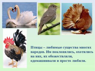 Птицы – любимые существа многих народов. Им поклонялись, охотились на них, их