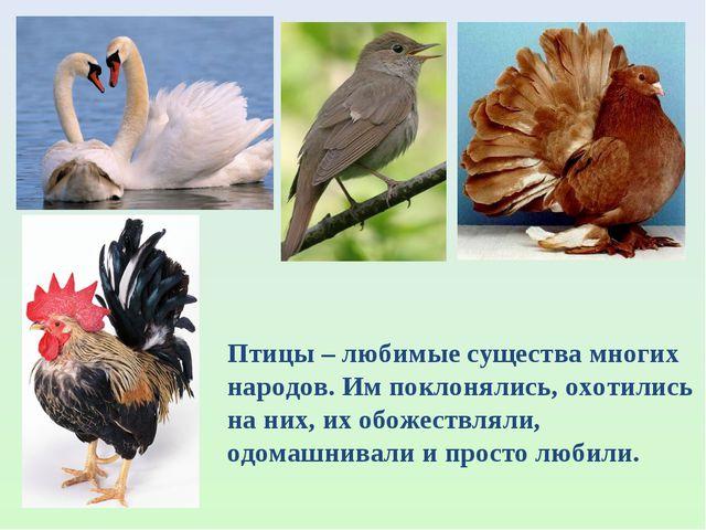 Птицы – любимые существа многих народов. Им поклонялись, охотились на них, их...