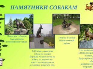 ПАМЯТНИКИ СОБАКАМ Этот памятник поставлен в Новосибирске собаке по кличке Дже