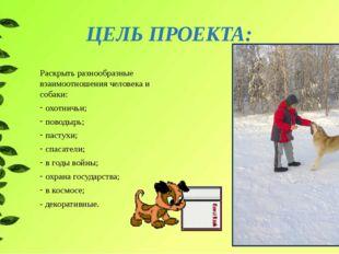 ЦЕЛЬ ПРОЕКТА: Раскрыть разнообразные взаимоотношения человека и собаки: охотн