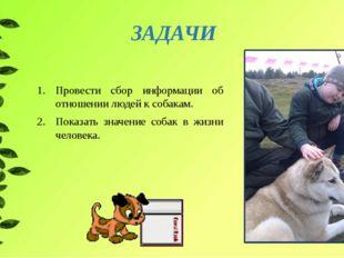 Провести сбор информации об отношении людей к собакам. Показать значение соба