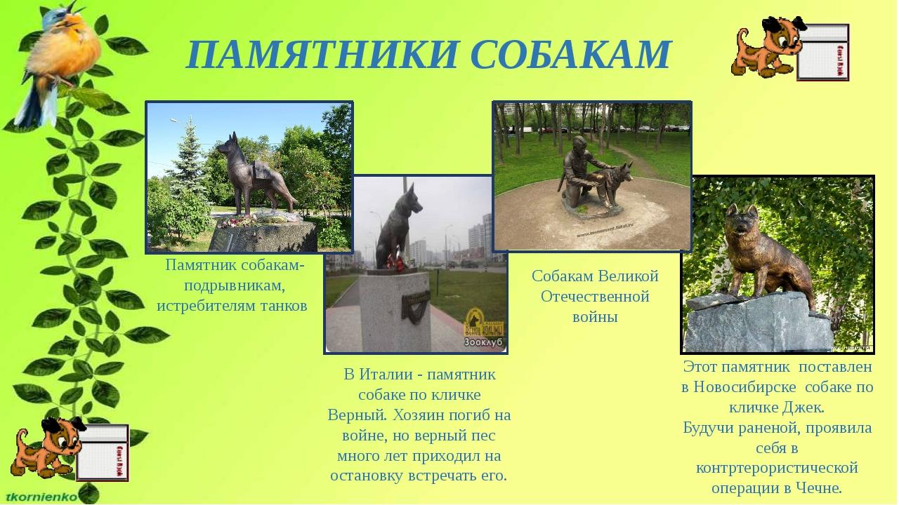 ПАМЯТНИКИ СОБАКАМ Этот памятник поставлен в Новосибирске собаке по кличке Дже...