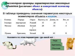 Рассмотрим примеры характеристик некоторых объектов (различают объект и конк