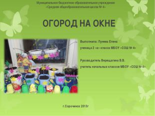 ОГОРОД НА ОКНЕ Выполнила: Лунева Елена ученица 2 «а» класса МБОУ «СОШ № 4» Ру