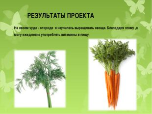 РЕЗУЛЬТАТЫ ПРОЕКТА На своем чудо - огороде я научилась выращивать овощи. Благ