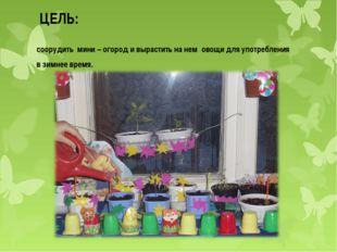 ЦЕЛЬ: соорудить мини – огород и вырастить на нем овощи для употребления в зим