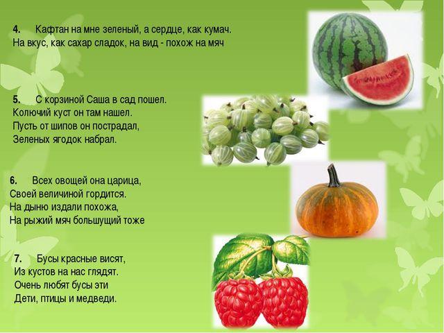 4.Кафтан на мне зеленый, а сердце, как кумач. На вкус, как сахар сладок...