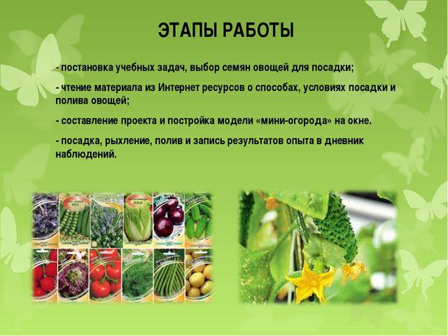 ЭТАПЫ РАБОТЫ - постановка учебных задач, выбор семян овощей для посадки; - чт...