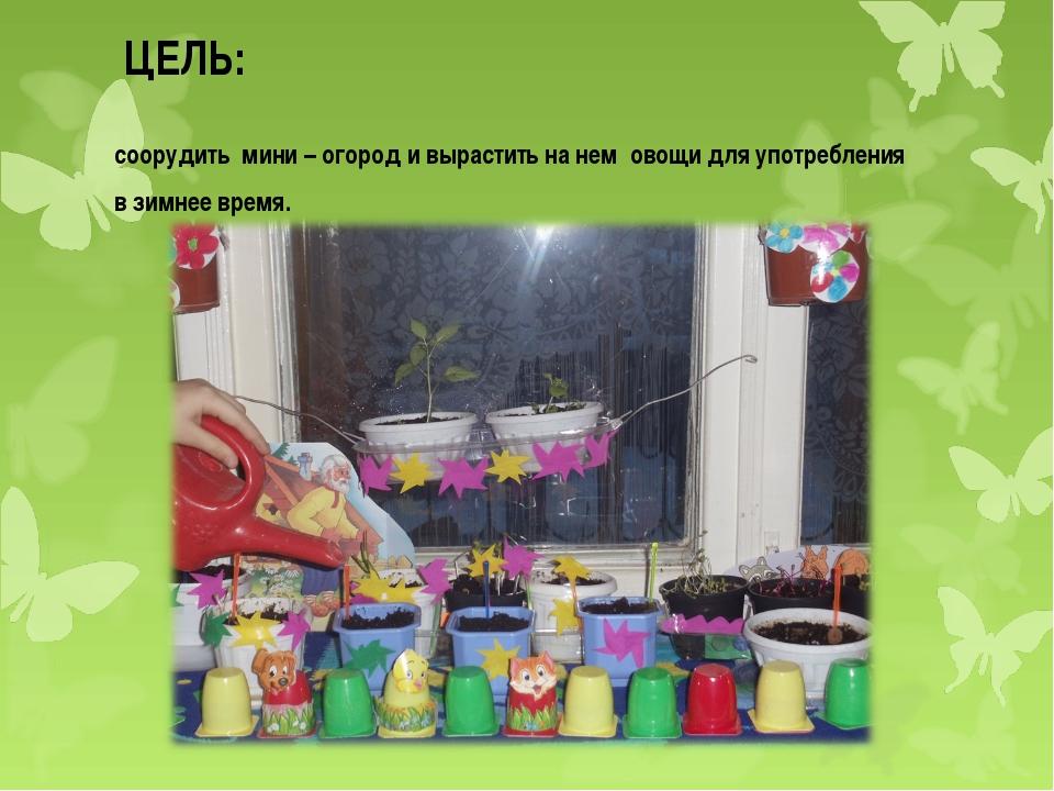 ЦЕЛЬ: соорудить мини – огород и вырастить на нем овощи для употребления в зим...