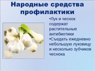 Лук и чеснок содержат растительные антибиотики Съедать ежедневно небольшую лу