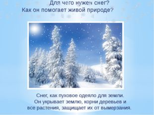 Для чего нужен снег? Как он помогает живой природе? Снег, как пуховое одеяло