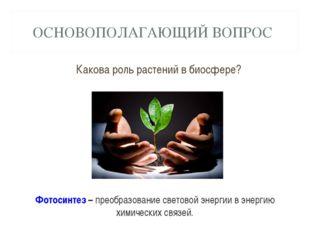 ОСНОВОПОЛАГАЮЩИЙ ВОПРОС Какова роль растений в биосфере? Фотосинтез – преобра