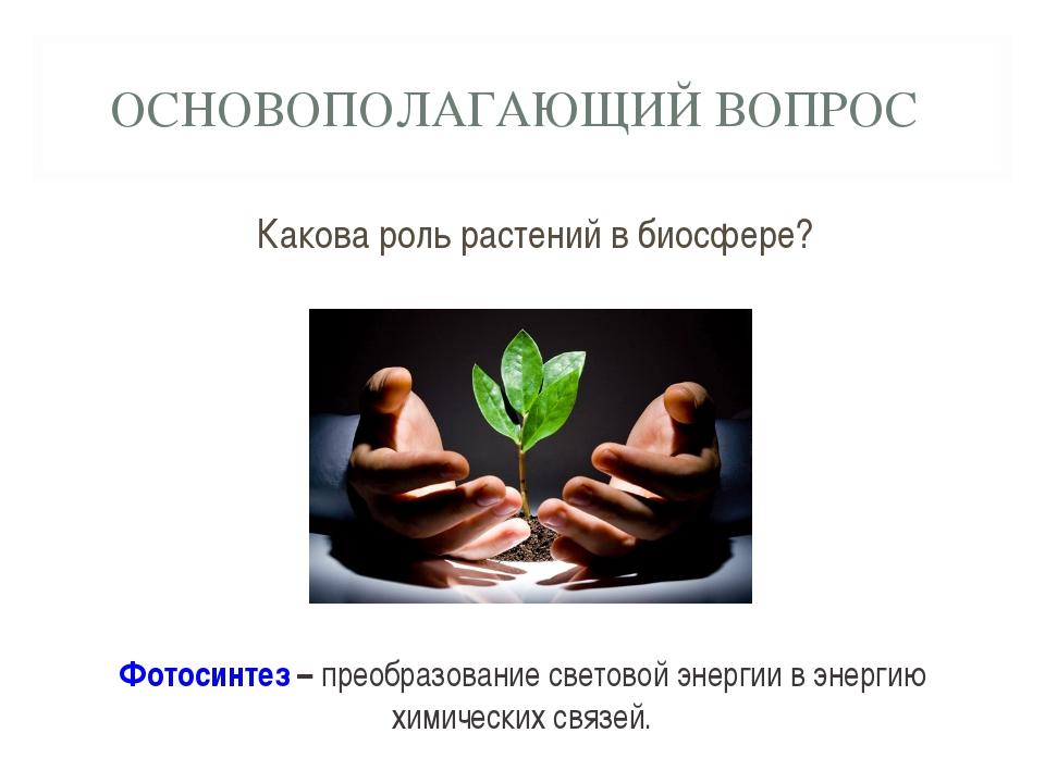 ОСНОВОПОЛАГАЮЩИЙ ВОПРОС Какова роль растений в биосфере? Фотосинтез – преобра...