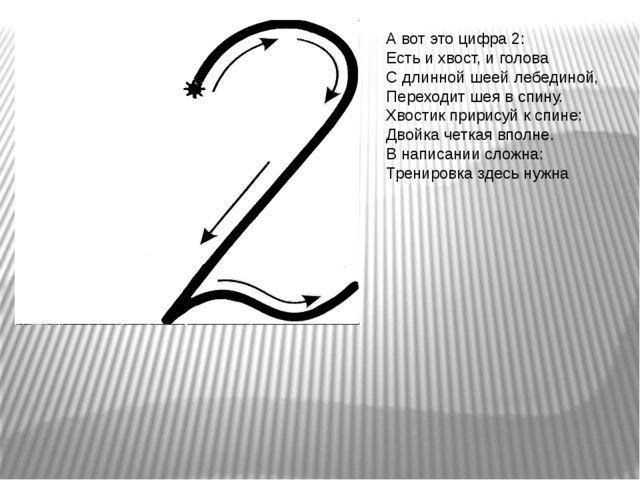 А вот это цифра 2: Есть и хвост, и голова С длинной шеей лебединой, Переходит...