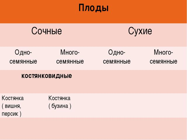 Плоды СочныеСухие Одно- семянныеМного- семянныеОдно- семянныеМного- сем...