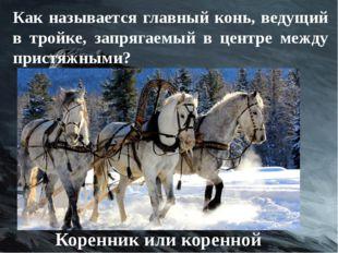 Как называется главный конь, ведущий в тройке, запрягаемый в центре между при