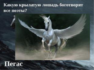 Какую крылатую лошадь боготворят все поэты? Пегас