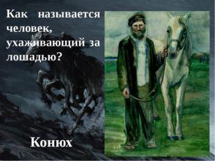 Как называется человек, ухаживающий за лошадью? Конюх