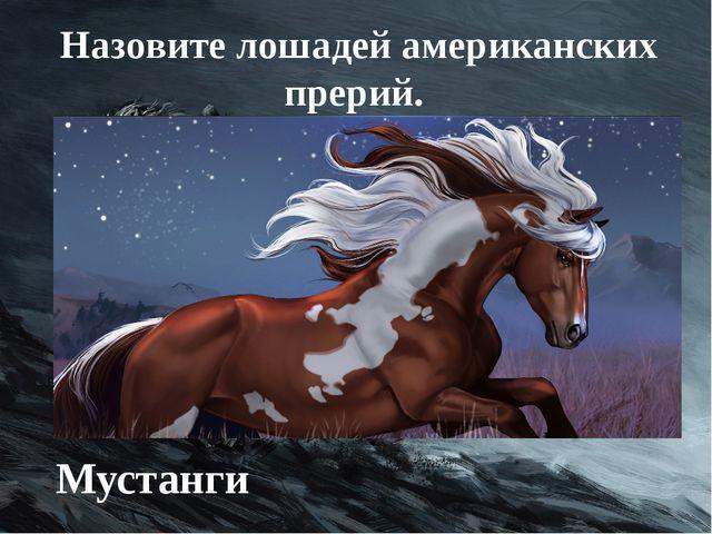 Назовите лошадей американских прерий. Мустанги
