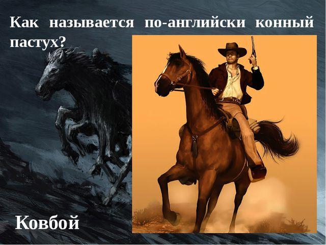 Как называется по-английски конный пастух? Ковбой