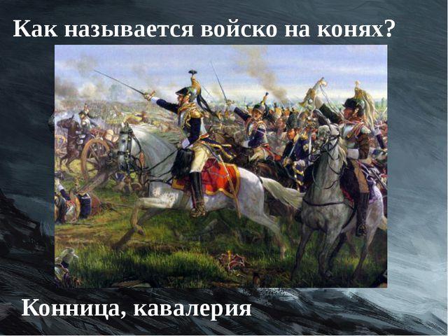 Как называется войско на конях? Конница, кавалерия