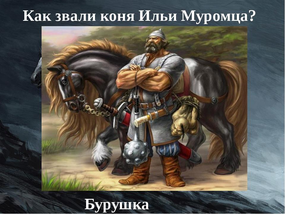 Как звали коня Ильи Муромца? Бурушка