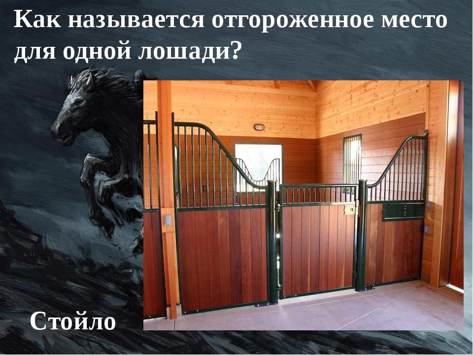Как называется отгороженное место для одной лошади? Стойло