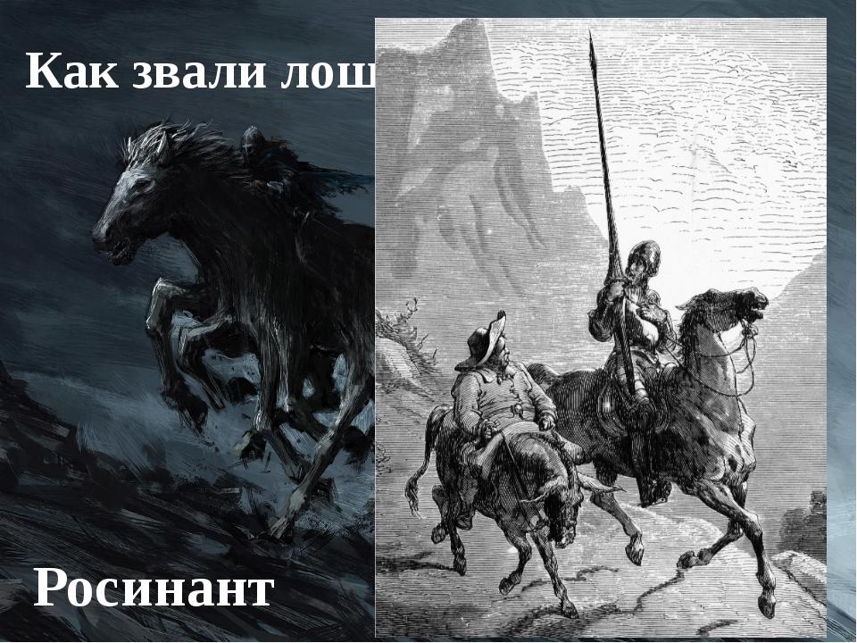 Как звали лошадь Дон Кихота? Росинант