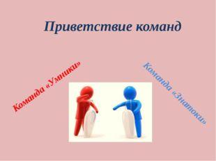 Приветствие команд Команда «Умники» Команда «Знатоки»