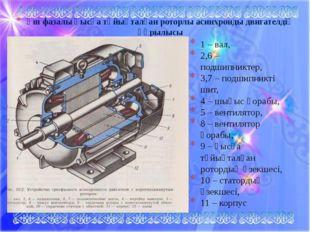Үш фазалы қысқа тұйықталған роторлы асинхронды двигателдің құрылысы 1 – вал,