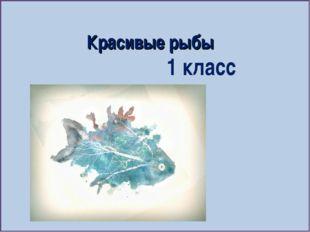 Красивые рыбы 1 класс