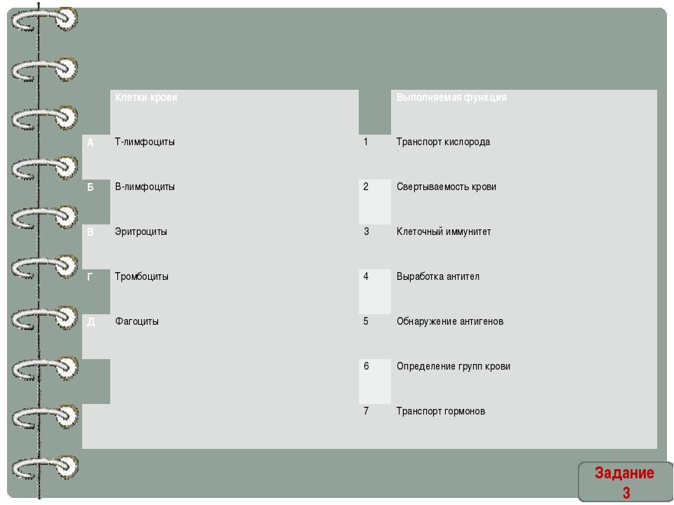 Задание 3  Клетки крови  Выполняемая функция А Т-лимфоциты 1 Транспорт кисл...