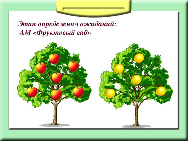 Этап определения ожиданий: АМ «Фруктовый сад»