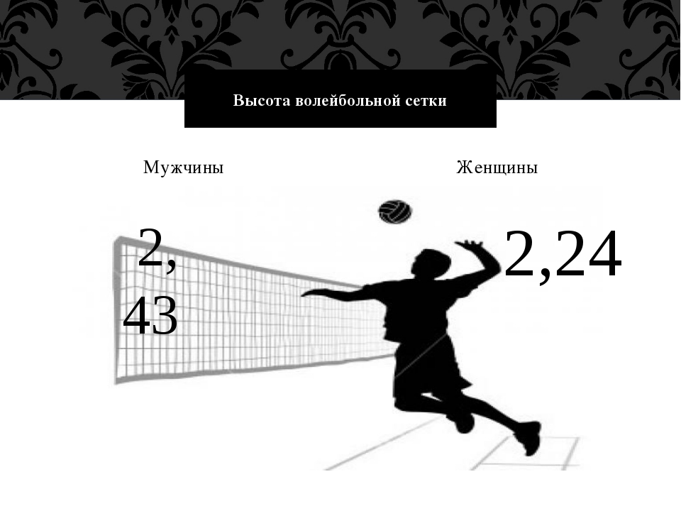 Мужчины Женщины Высота волейбольной сетки 2, 43 2,24